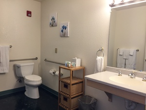 Accessibility King Suite Photo 2