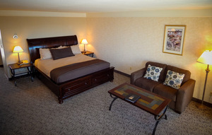 Pet Friendly King Spa Suite Photo 4