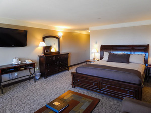 Pet Friendly King Spa Suite Photo 3